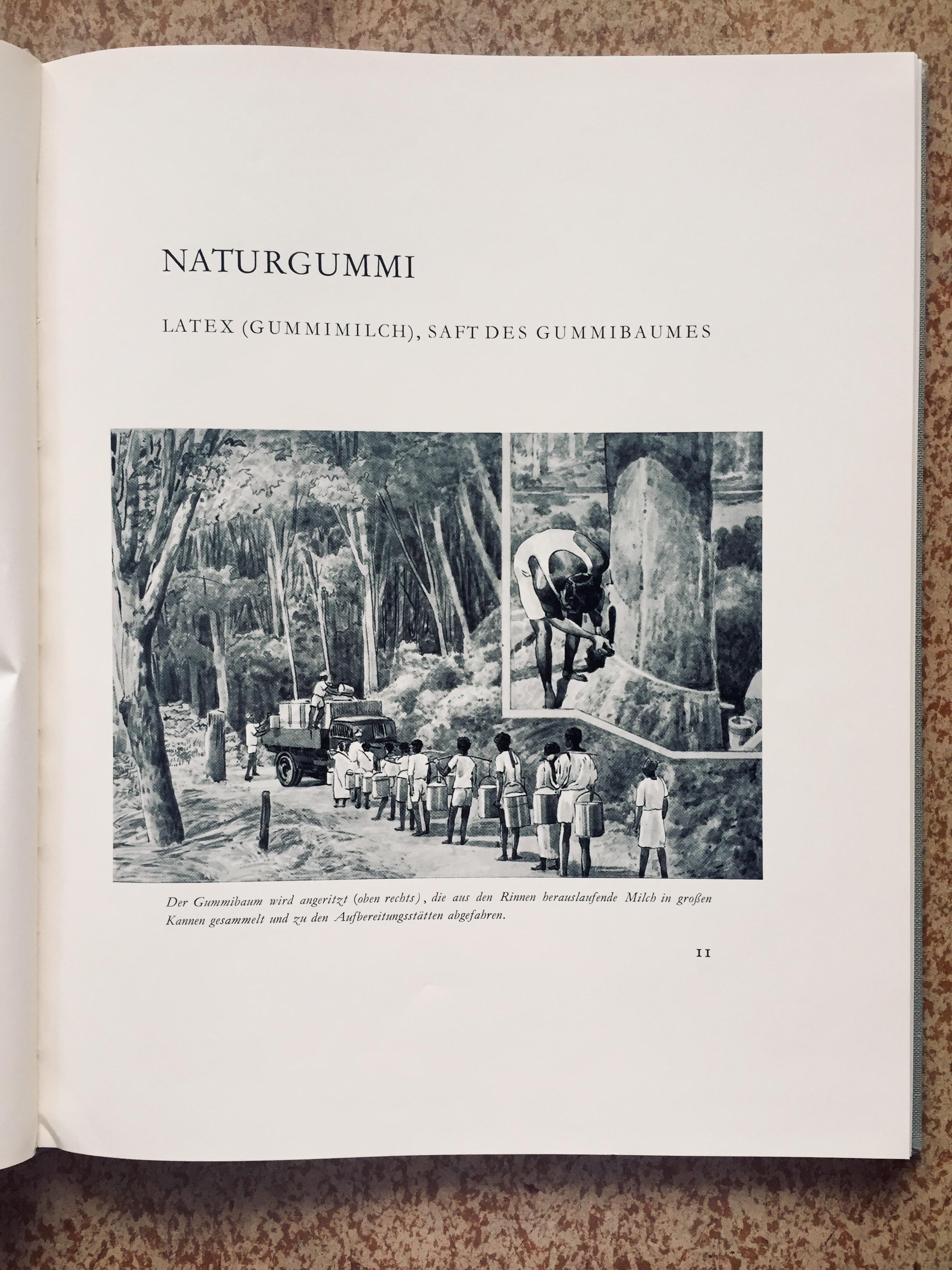 Festschrift illustration of workers on a rubber plantation, 1957